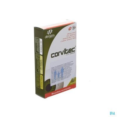 CORVITEC DERGAM            CAPS  60