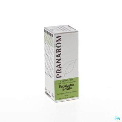 Eucalyptus Radiata Ess Olie 10ml Pranarom