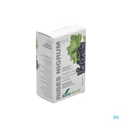 23-s Ribes Nigrum